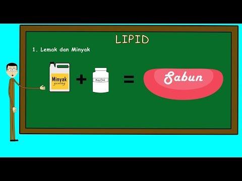 lipid -#Lemak dan Minyak