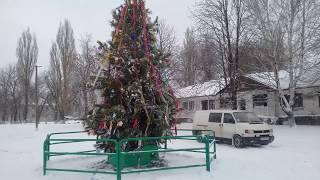 Фото ФАЩЕВКА   ЕЛКА 2019