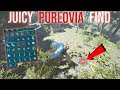 JUCIEST PURLOVIA FIND EVER !!! - ARK SMALL TRIBES PVP #47