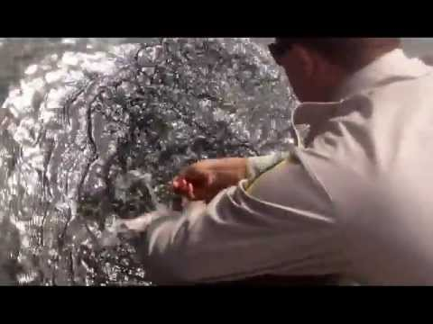 Tips On How To Fish In Alberta Waters