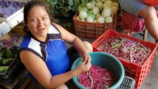 Desgranando frijoles nuevos La Palma Chalatenango El Salvador