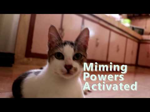 Miming Powers activated mp4