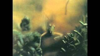 Steely Dan - Katy Lied (1975, Studio Album) 09 Any World (That I
