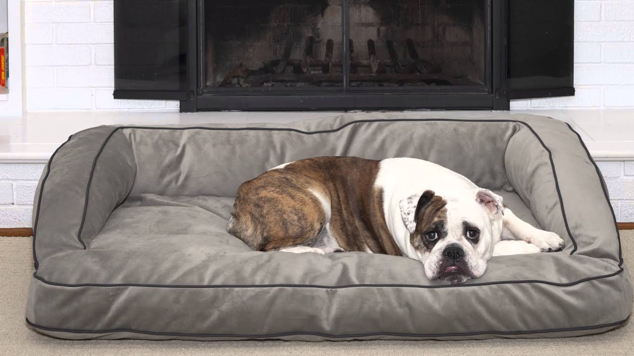 what is the best fabric for a sofa when you have dog. Black Bedroom Furniture Sets. Home Design Ideas
