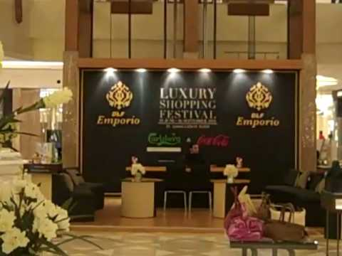 Luxury Shopping Mall & Fancy Restaurant in New Delhi, India