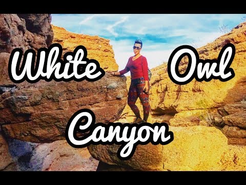 Finding Lake Mead's Hidden White Owl Canyon