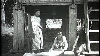 Indonesia, Sumatra, prewar rice cultivation