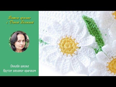 Цветок ромашка садовая - выращивание в домашних условиях
