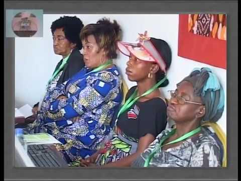 Master Class  Réseau des Femmes Entrepreneures Nord Sud à Yaoundé