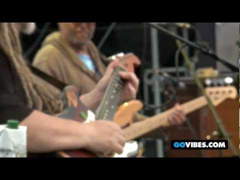 """7 Walkers Perform """"Wharf Rat"""" at Gathering of the Vibes Music Festival 2012"""