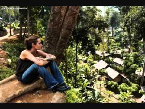 Angelina Jolie - World Refugee Day 2011