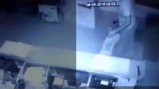 CCTV Video: Robber Loots Watch Showroom in Just 30 Mins in Amritsar(Watch this CCTV video as a robber loots watch showroom in Amritsar in just thirty minutes. He steals the watches worth twenty lakh rupees. SUBSCRIBE to India ..., 2016-06-10T02:13:12.000Z)