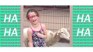HA HA FUNNY VIDEO - Funny Animals