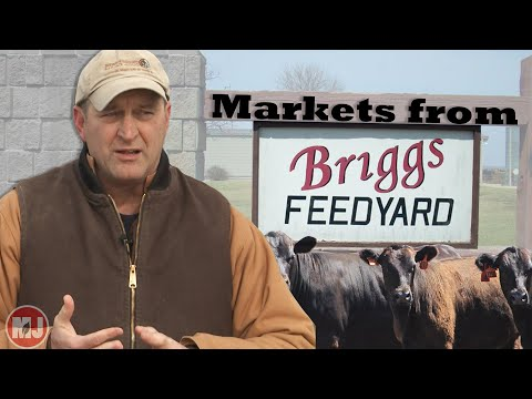 Market Report with Mike Briggs | February 15, 2019