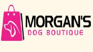 Personalised Ceramic Dog Bowl - Border Terrier