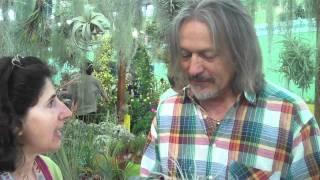 """Euroflora 2011: le piante aeree (alias """"Le figlie del Vento"""")"""