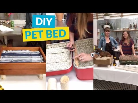 Adorable DIY Dog/Cat Bed!