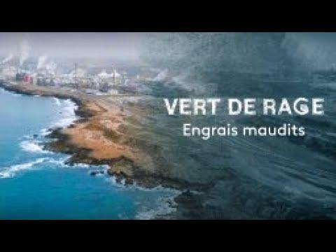 فيديو...وثائقي فرنسي يحمل المسؤولية للمكتب الشريف للفوسفاط فيما يخص التلوث