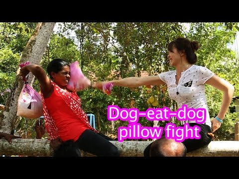 Ladies from Peru and Uzbekistan fight dog eat dog/스리랑카 여행-베게싸움
