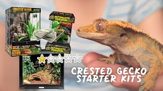 Rating CRESTED GECKO Starter Kits - What They Contain & Are They Worth It?