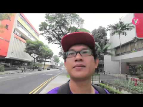 Vitdaily Special : Singapore