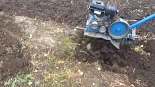 Вспашка земли мотоблоком НЕВА в Саратове и Энгельсе