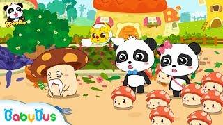 【New】What Happens to Grandpa Mushroom's Garden?   Math Kingdom Adventure 9   BabyBus