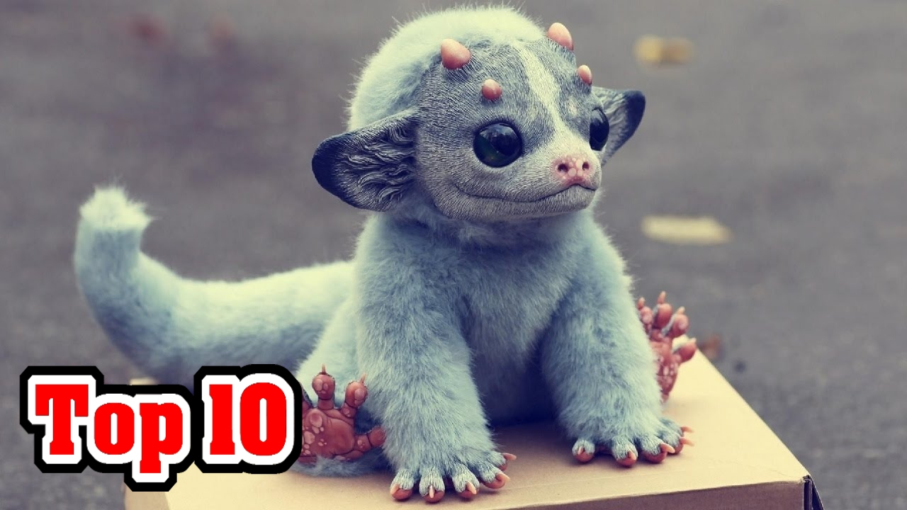Top 10 Most Unusual Extinct Animals