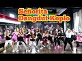 Señorita By Shawn Mendes Ft Camila Cabello (Cover By Via Vallen ) Dangdut Koplo