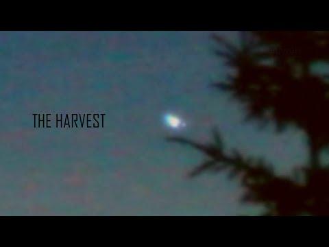 UFO Phenomena: The Harvest of Earth