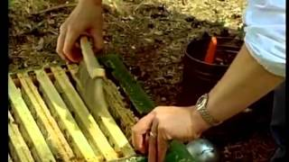 видео Учебник пчеловода. Создание запаса сотов и производство воска