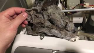 ドラム 臭い 洗濯 日立 式 機