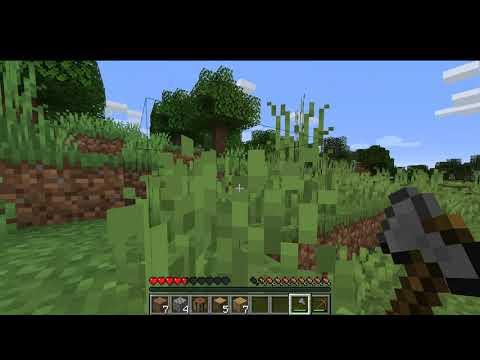 ICH WERDE VERFOLGT!?!?-Minecraft LP #001