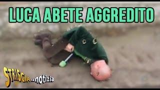 Luca Abete Aggredito a Caserta - Video Completo - Striscia la Notizia