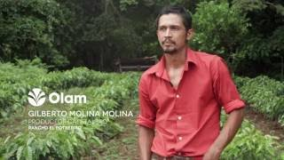 Olam Coffee - Tackling Cafe Roya in Mexico