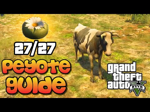 GTA 5 - All 27 Peyote Plant Locations Guide - Play As Animals Easter Egg Tutorial (GTA V)