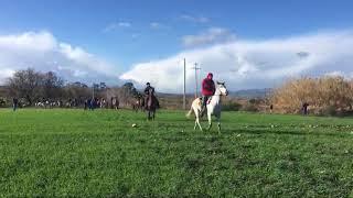 Pellegrinaggio a cavallo di San Biagio