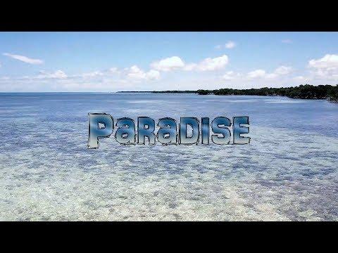 """Paradise"" 4K"