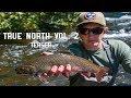 True north vol 2 teaser mp3