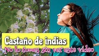 De la comunes para semillas de venta castaño indias