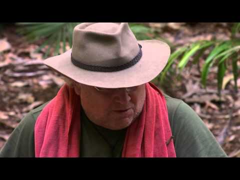 How Many Episodes Of Doctor Who Was Colin Baker In  I'm A Celebrity Get Me Out Of Here