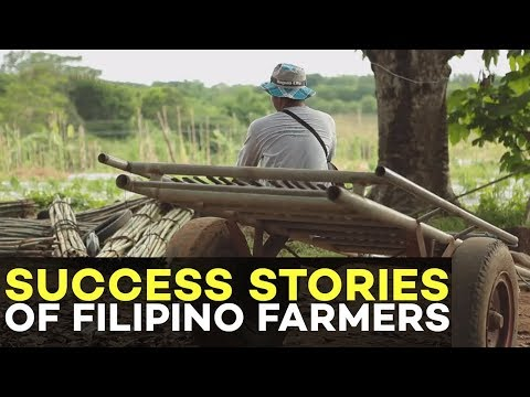Success Stories of Filipino Farmers: Sacrificed Schooling to Help his Father in Vegetable Farming