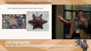 видео: Ученые против мифов 2-11. Александр Марков: Мифы о переходных формах