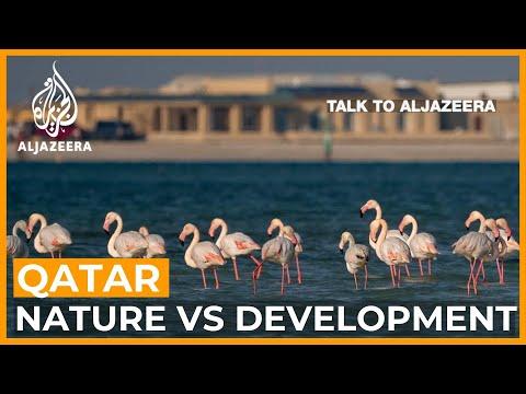 Qatar: Nature and development at a crossroads | Talk to Al Jazeera