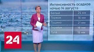 Погод 24   дожди не прогонят лето из Москвы