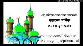 Ai gariber shono ।। Nazrul Sangeet ।। Tariq Monawar ।। এই গরীবের শোন
