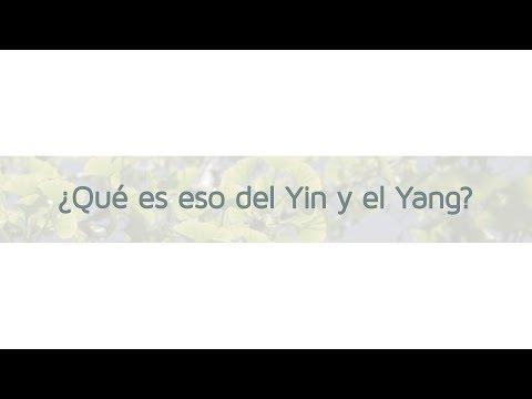¿Qué es eso de Yin y el Yang?