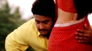 Simhadri Movie || Nannedo Seyyamaaku Video Song || Jr NTR || Bhoomika Chawla || Ankitha