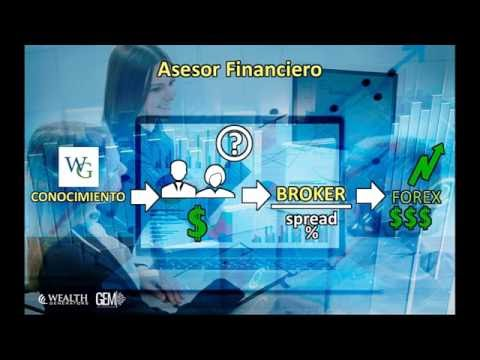 Wealth generators forex trading
