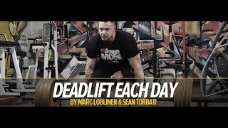 Deadlift Every Day Workout Program